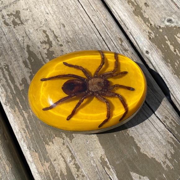 Belt buckle with resin tarantula